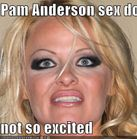Pam Anderson sex doll not so excited  Cheezburger