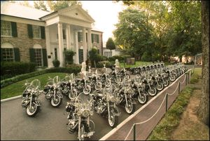 29 of the 30 Elvis replicas issued in 2007 - lined up at Graceland