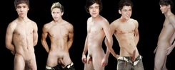 The Fakes Blog: One Direction  Fake Naked!