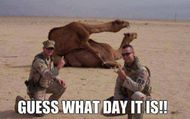 90 Miles From Tyranny : Happy Hump Day!