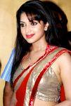 Amala Paul Hot in Saree Photos
