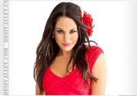 Top Sport Players Pictures & News: Brie Bella WWE Female Stylish Star
