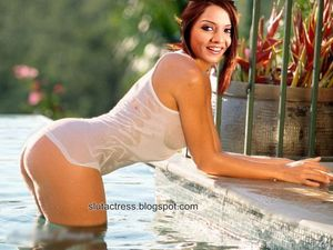 celina jaitley wet showing hot ass