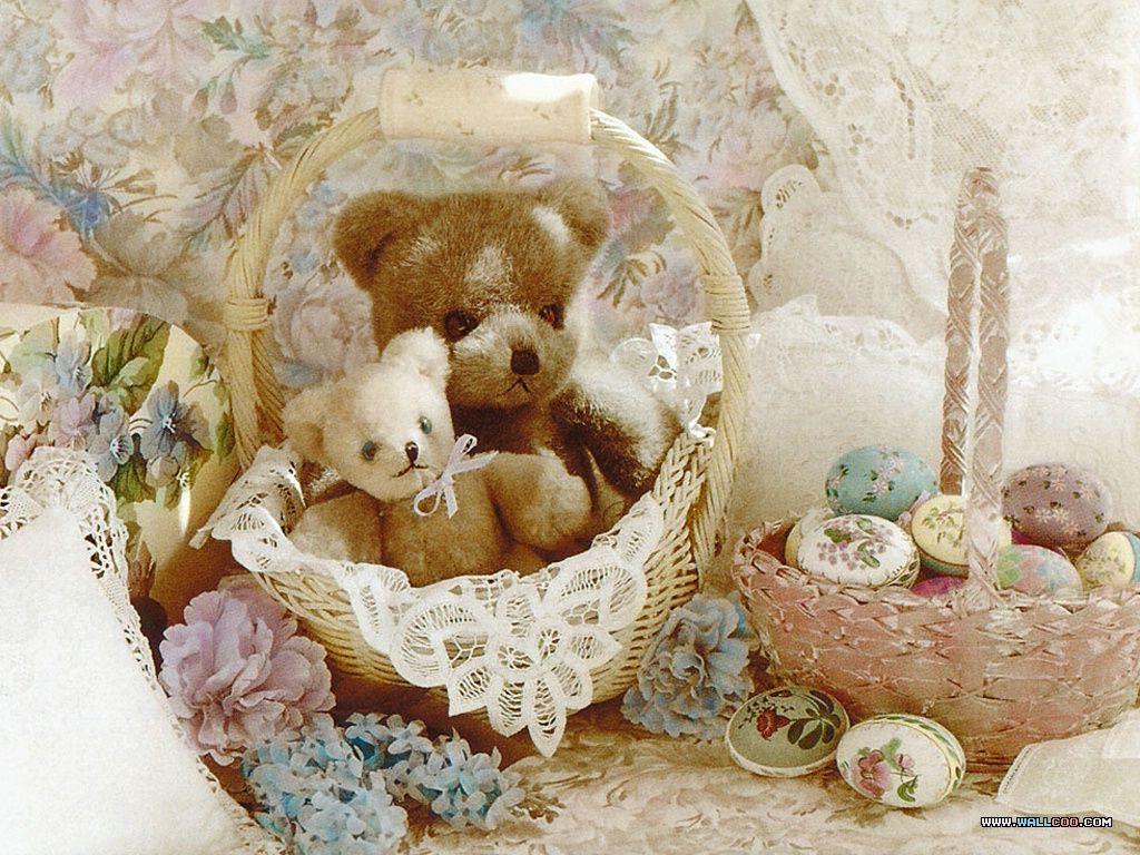 Teddy Teddy Teddy