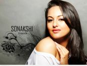 sonakshi sinha wallpapers 2013 sonakshi sinha wallpapers 2013 sonakshi