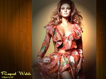 American actress, author and sex symbol Raquel Welch Gallery