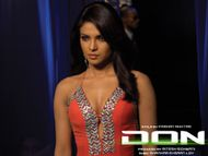 Priyanka Chopra Hot ~ Hot Indian Actress Gallery
