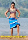 Amala Paul Transparent top | INDIAN AND SOUTH ACTRES NUDE PICS AND