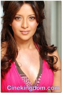 bikini actress: Hottest Tamil Actresses Reema Sen Wallpapers