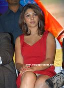indian actress: Richa Gangopadhyay smooth cleavage and panty peek pics
