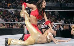 WWE TNA Superstars And Divas