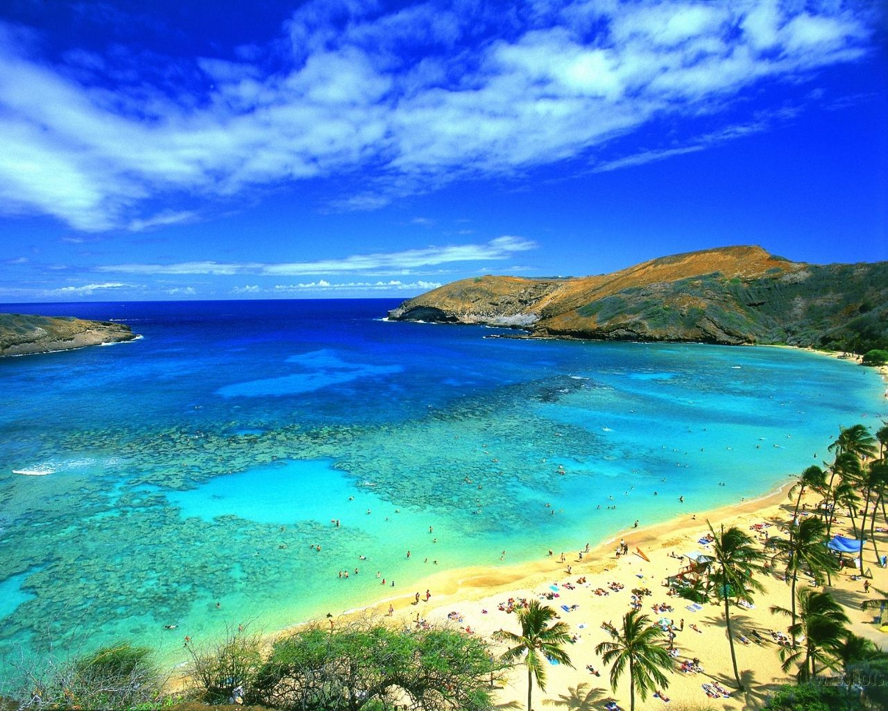 Summer Carter With All The Things To Do In Hawaii