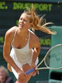 Maria Sharapova : tennis babe downblouse at wimbledon : Hot n Wild