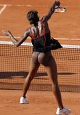 Venus Williams Tennis Upskirt Pictures