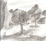 All Things Pointe to God: Landscape Pencil Drawing