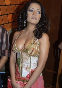 Actors and Actress Photo Gallery: Sexy Celina Jaitley Big Boobs Photos