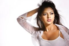 Modda | South Indian Actress Photos: Amala Paul Hot Pics ( 15 Photos