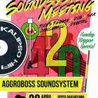 Music Speaks Louder Than Words: Soundsystem Meeting 420