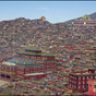 Akademi Buddha Larung Gar Di Tibet