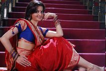 Monica Bedi in Hot Saree Hollywood Images|Bollywood Images| Amazing