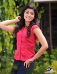 Pranitha Subhash Stunning Pics  Indian Stunning Actress