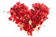 KOANTIZ le blog: Une saint Valentin d'enfer ou ZEN ?