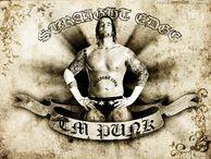 CM Punk American Professional Wrestler
