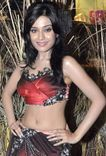 Porn Star Actress Hot Photos for You: Amrita Rao Cool Photo Gallery