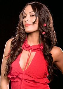 Wrestling Stars: Brie Bella WWe Profile - Brie Bella Pictures/Images