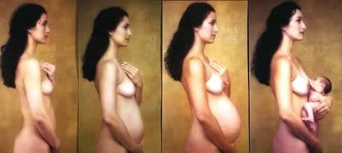 Breast Bud Pics