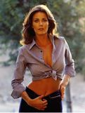Celebrity Nude Century: Wonder Woman! (Lynda Carter)