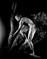 for stills from Tarzan the Ape Man (1932)  Image source : Doctor Macro