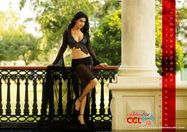 Deeksha Seth,Shriya Saran In CCL 2 Calendar Photo Shoot  August