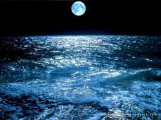 Absor��es: Mar�