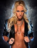 WWE Diva Michelle McCool Sexy Bikini Nude hot Images,Pictures,Photos