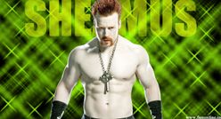 All Sports Superstars: Sheamus WWE World Heavyweight Championship 2012