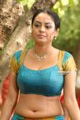 KOLLYWOOD MIRCHI: Meenakshi hot navel show wet stills HD