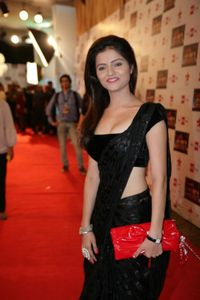 Rubina dilak hot pics in saree - Hot South Indian Actress Sexy Photos