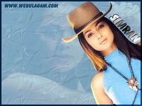 SIMRAN NUDE WALLPAPERS,SEXY PHOTOS,NUDE WALLPAPERS