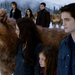 THE TWILIGHT SAGA: BREAKING DAWN PART 2 12