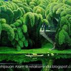 Nikmati Pemandangan Indah Kehijauan Alam @ Relaks Minda - Relaks Minda