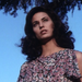 Two Pictures Of Cristina Raines From Her 1977 Guest Role On Kojak