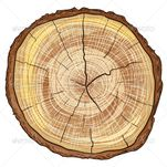Stock Vector  GraphicRiver Wood Log 4987403 � Dondrup com