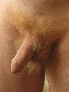 Love Male Pubic Hair