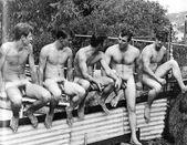 Major Dad's Vintage nude 0635(via thedailyhaul