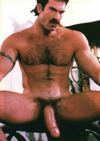 Hairy, Smooth,Adult Videos,Anal Sex,Celebrity,Dads,Bears,Hairy,Muscled