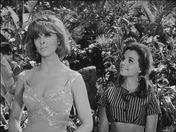 Tina Louise & Dawn Wells  �Gilligan�s Island�