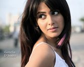 Genelia Desouza: Latest HD Wallpapers  Genelia D'souza