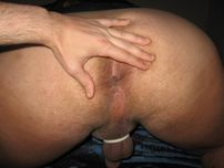 Variety of Bears: Fingering my Ass Hole