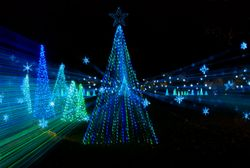 Shadrack's Christmas Wonderland Lights Up the Holidays in Tennessee
